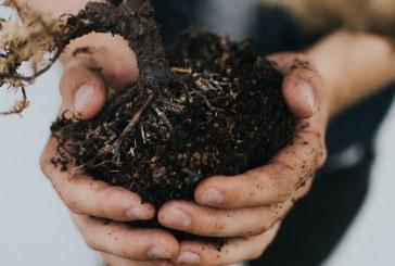 Нека се погрижим за почвата, за да защитим храната си