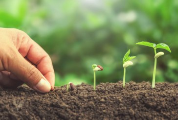 Как ще се промени Закона за посевния и посадъчни материал