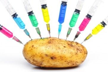 Съдебно решение относно ГМО провокира много въпроси в ЕС