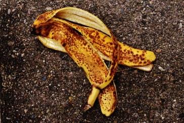 Как да обогатим почвата с бананови кори