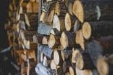 Задържаха 24-годишен за кражба на дървесина