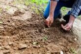 Трудно ли е управлението и финансирането на едно земеделско стопанство