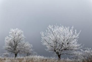 Земеделците в Бургаско още не смеят да прогнозират каква ще е реколтата