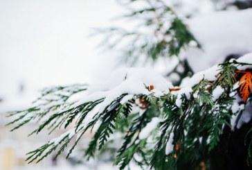 Дъждът над Рила и Пирин ще преминава в сняг