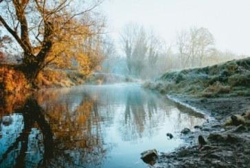 Много от реките в Европа са замърсени с пестициди и антибиотици