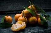 Има ли опасни химикали в цитрусовите плодове? (ВИДЕО)