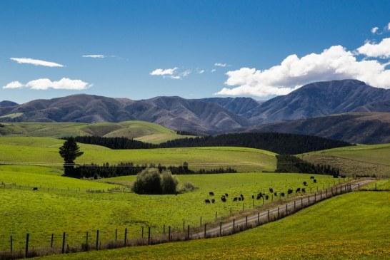 С 400 млн. ще бъдат финансирани планинските райони