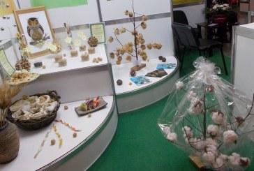 """Плантации за трюфели и фин цветен памук сред иновациите на изложбата """"Агра 2019"""""""