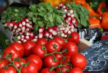 Българските зеленчуци продължават да губят пазари