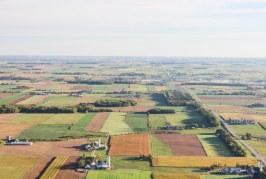 Какво се случва с площите с есенни култури