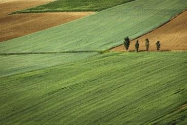 Ще се приемат заявления за застраховане на селскостопанска продукция от 16 март