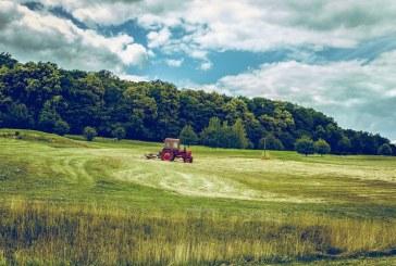 Селското стопанство е един от водещите сектори в област Видин