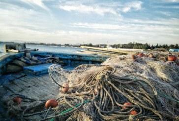 Инспектори на ИАРА иззеха незаконни уреди за риболов от река Дунав