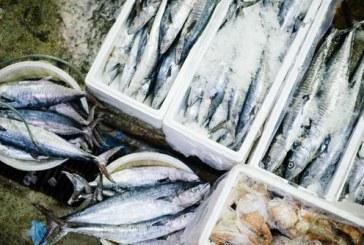 Потреблението на риба и рибни продукти у нас расте