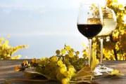 Как и ще се промени ли държавната помощ за лозаро-винарския сектор