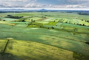Над 4,5 млн. лева получиха дребните земеделски стопани