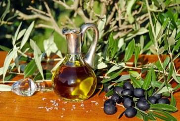 Климатичните промени свиха с над 50% реколтата от маслини