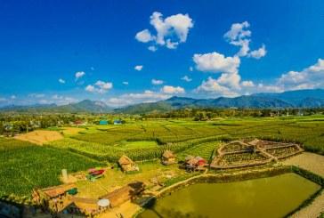 За селското стопанство е важна общата визия, а не отделните интереси