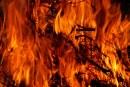 Трима души са в критично състояние след пожар в кравеферма