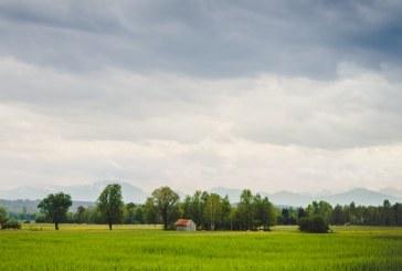 Какво се случва с посевите в страната