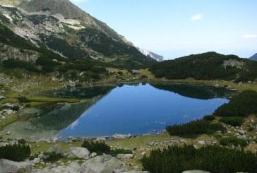 Пашуващи животни замърсяват езерата в Пирин