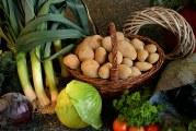 Откриха над 20 тона зеленчуци с пестициди над нормата