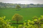 Решиха дело за връщане на земеделски земи, продължило повече от 25 години