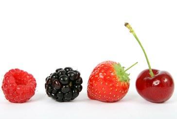 Българските ягоди по пазарите чукнаха 8 лв./кг.