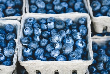 Стандартът GlobalG.A.P. ограничи вноса на плодове и зеленчуци в ЕС