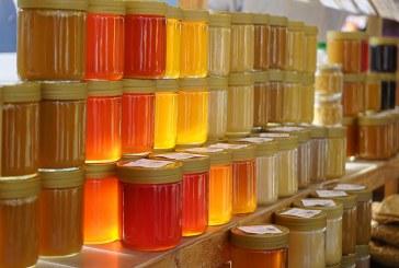 Какви са очакваните изкупни цени на пчелен мед за 2019
