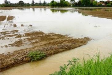 Скъсана язовирна стена наводни земеделски земи