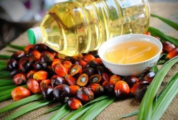 33 хил. тона палмово масло сме внесли в България