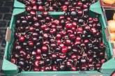 Изкупуването на черешите в Кюстендилско ще се извършва по определен ред