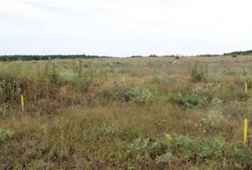 """Какво трябваше да се случи с Интегрирания план за зоните от """"Натура 2000"""" край Калиакра"""