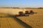 Започна жътвата на ечемик и пшеница