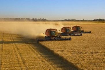 Как валежите в Севлиево повлияха на посевите