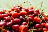 Производители на череши са на път да се откажат от градините си
