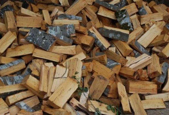 Изготвят промяна на Наредбата за ползване на дървесината