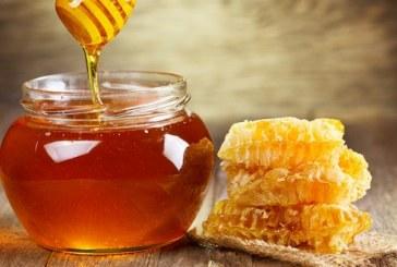 Троен скок в цената на меда от кошера до магазина