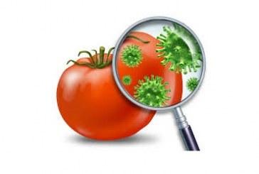 Биосензор открива остатъци от пестициди в плодовете и зеленчуците