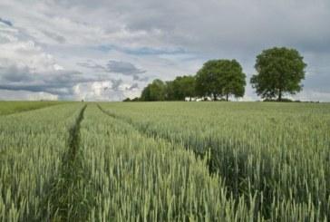 Над 58 млрд. евро за земеделие в ЕС през 2020 г.