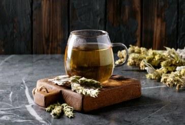 Вълшебните свойства на мурсалския чай