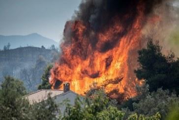Локализираха пожара на гръцкия остров Евбея
