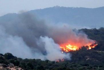8000 декара площ е обхванал пожарът край хасковските села