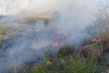 Горски служители и пожарникари овладяха пожара в Реброво