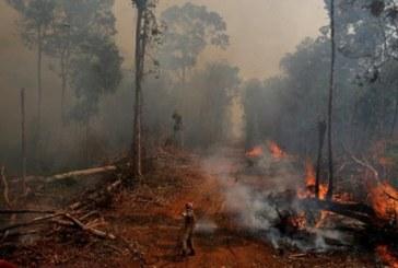 Бразилският министър: Амазония няма да изгори