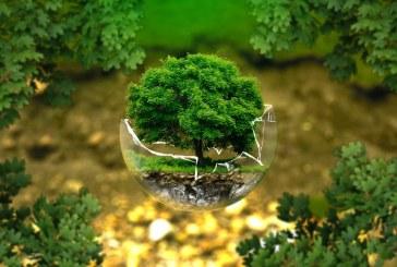 На кое място е България по екологична ефективност