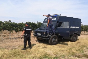 Полиция и жандармерия охраняват лозовите масиви в Пазарджишко