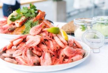 Бургас посреща любители на рибата и виното
