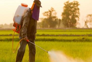 Повече от 1000 земеделци са санкционирани за 2019-а за нарушения с пестициди